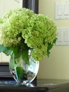 vase hydrangeas mirror