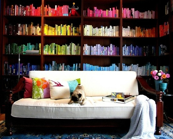 color bookshelf couch
