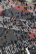 Shibuya crossing , one of the world's busiest, outside Shibya station , Tokyo Japan / Michael Freeman Photography